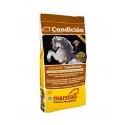 Marstall Condicion Individual Linie