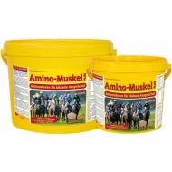 Amino Muskel Plus