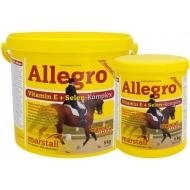 Marstall Allegro