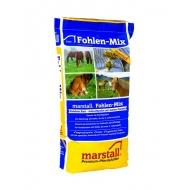 Marstall Fohlen Mix