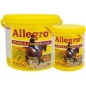 Allegro Récupération en Boutique