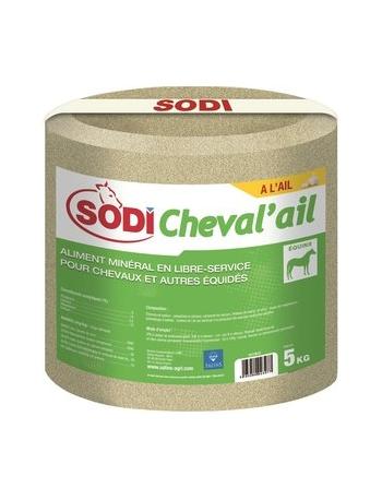 Pierre à sel Sodicheval Ail 5 kg