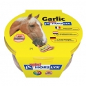 Horslyx Garlic