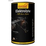 Elektrolyte Récupération en Boutique