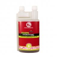 Hydratonic 1L solution