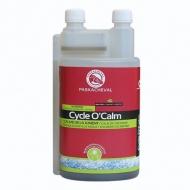Cycle O Calm