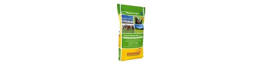 Marstall Struktur (pré alpin foin fourrage)