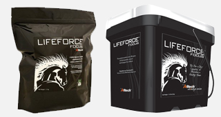 LifeForce Focus pour cheval